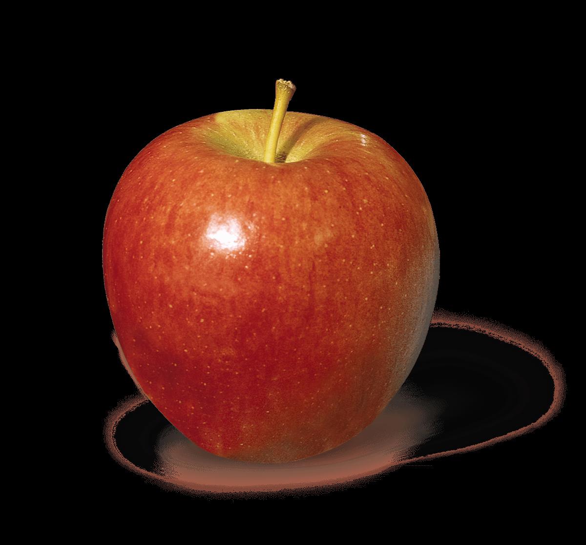 Apple Photo - Braeburn