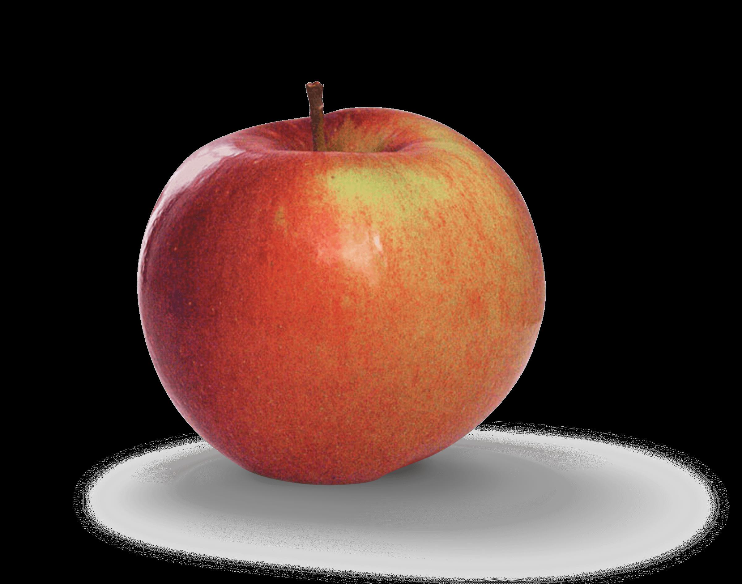 Apple Photo - Fortune