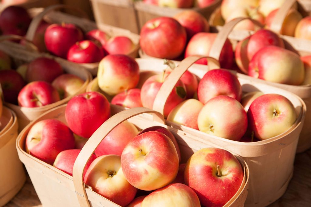 Home - New York Apple Association