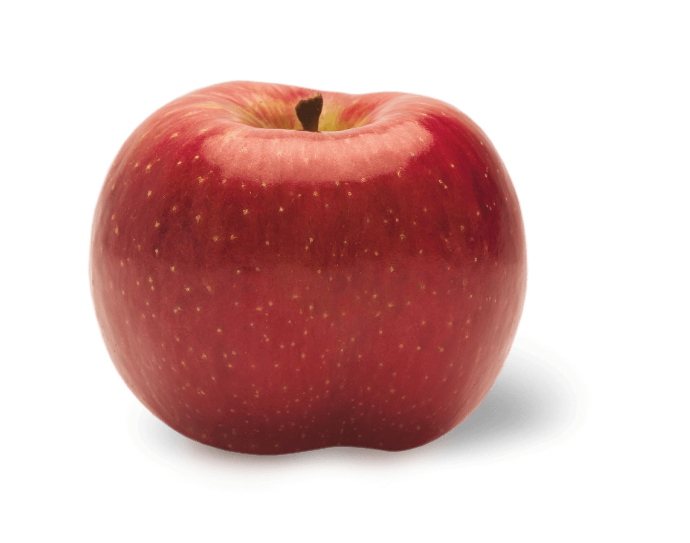 Apple Photo - Evercrisp<sup>®</sup>
