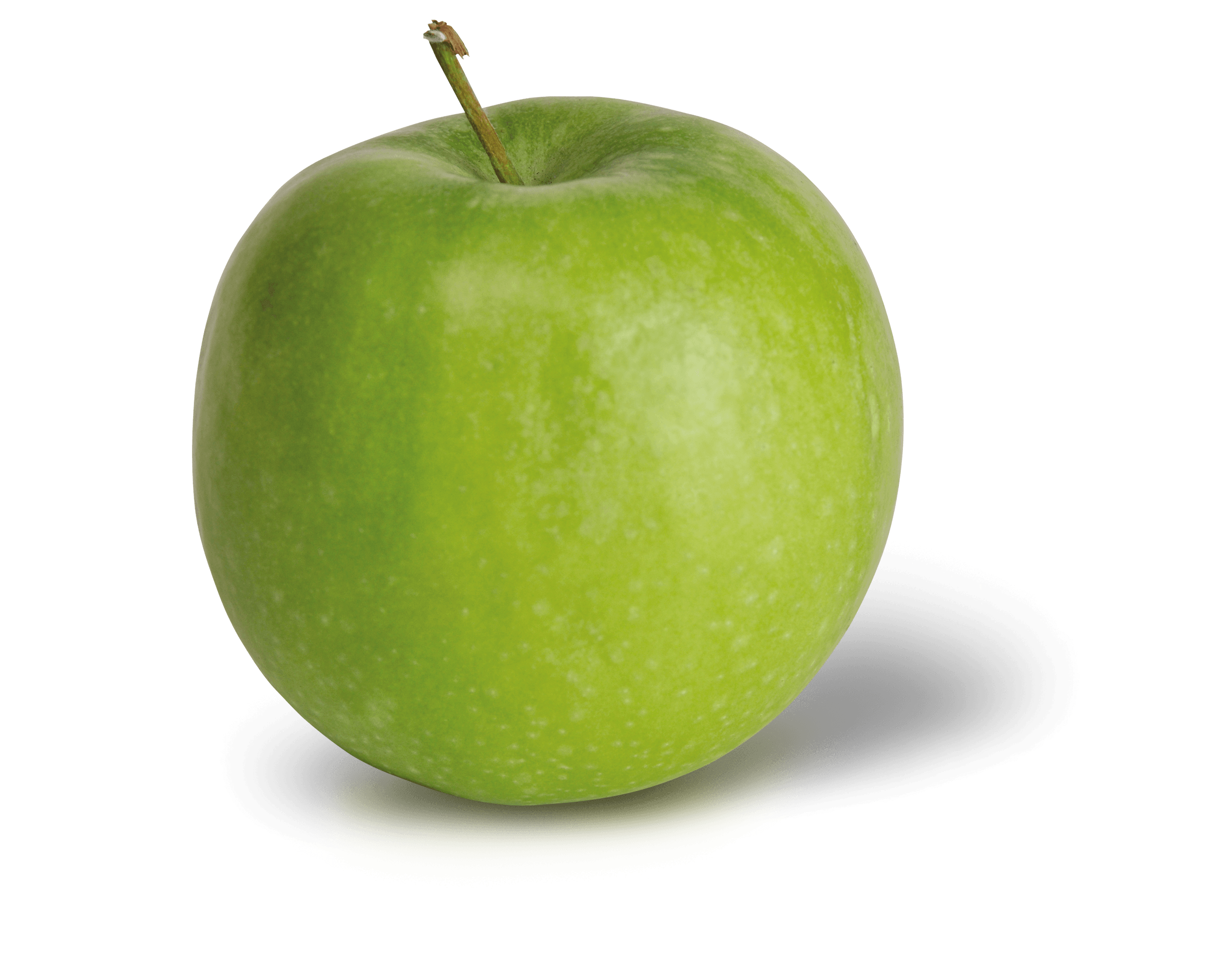 Apple Photo - Granny Smith